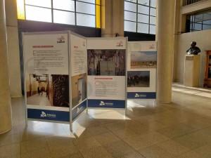 stand - paneles  muestra fotografia